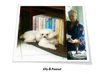 elley_peanut