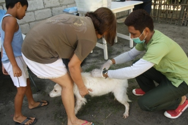 AKF servicing 53 pets at Cubcub, Capas, Tarlac on May 24, 2014. Fifty-three pets.