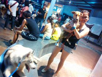 A Kingdom For Hope at Centris Walk-Quezon City. Apr. 27, 2014. AKF's rescued dog adopted by Tina of Bulacan